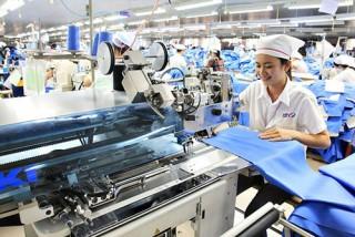 EVFTA: Cơ hội lớn, làm sao tận dụng?