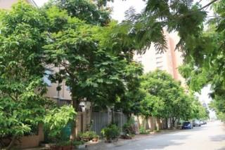 Bất động sản phía Tây Hà Nội tăng nhiệt