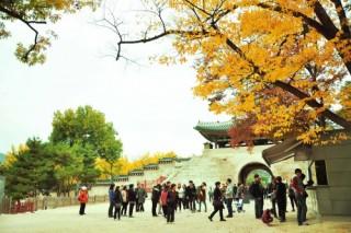 Nhiều chính sách ưu đãi cho du khách khi tới Hàn Quốc hè 2015