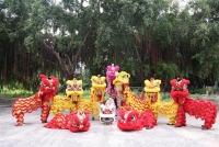Đến Tây Ninh trẩy hội Trung Thu, chuyến đi ý nghĩa và đáng nhớ
