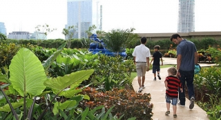 """Cân bằng """"đa trải nghiệm"""" tại Vườn Nhật The Zenpark"""