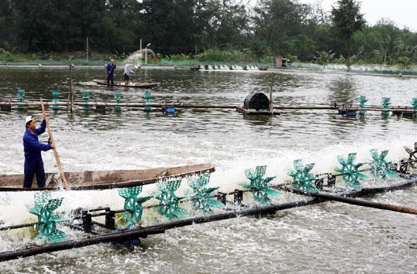 Giảm nghèo ở dải đất hẹp Quảng Bình