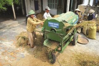 Khi nông dân tính chuyện hội nhập