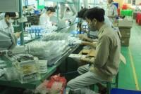 Công ty bóng đèn phích nước Rạng Đông đạt doanh thu 2.939 tỷ đồng