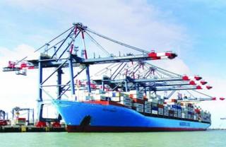 Tìm giá trị gia tăng mới trong sản xuất và xuất khẩu