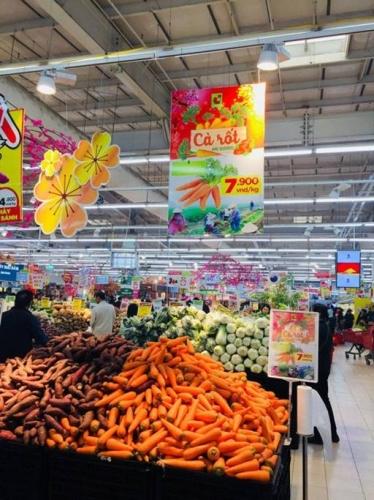 Central Group Việt Nam hỗ trợ nông dân Hải Dương tiêu thụ cà rốt