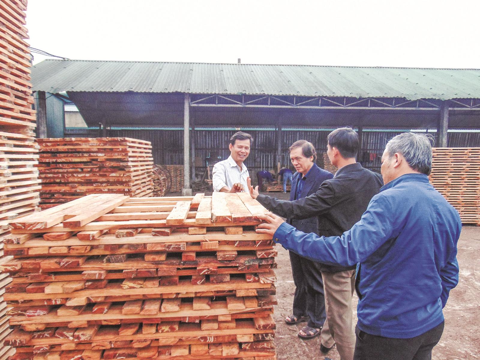 Bảo đảm tính hợp pháp của sản phẩm gỗ