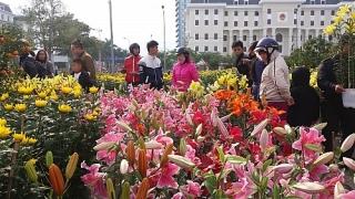 Bảo đảm môi trường tại chợ hoa tết