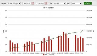 Năm 2020, HNX-Index tăng 98%, giá trị giao dịch tăng 77,9%