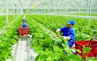 """NgànhNgân hàng Hà Nội: """"Đầu kéo"""" kinh tế Thủ đô bật tăng trở lại"""