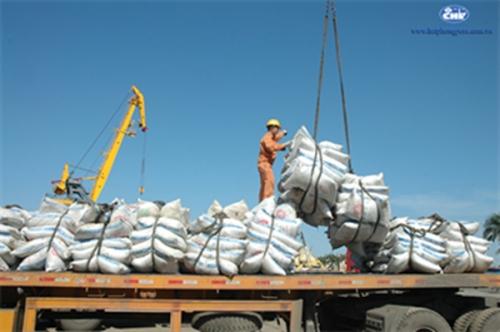 DN giảm lợi nhuận 15-20% vì phí cảng biển của Hải Phòng