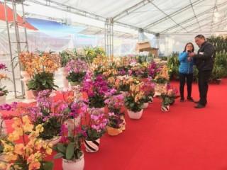 Gần 200 DN tham gia Hội chợ Xuân Mậu Tuất 2018