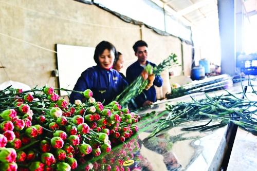 Trúng mùa từ vốn rẻ tam nông