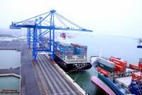 Tân cảng Sài Gòn đóng góp 20% cho ngân sách TP.HCM