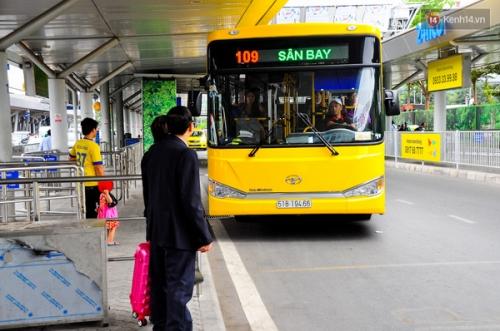 TP.HCM: Bus miễn phí vào sân bay hút khách