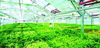 Cần tạo thêm thuận lợi cho doanh nghiệp nông nghiệp