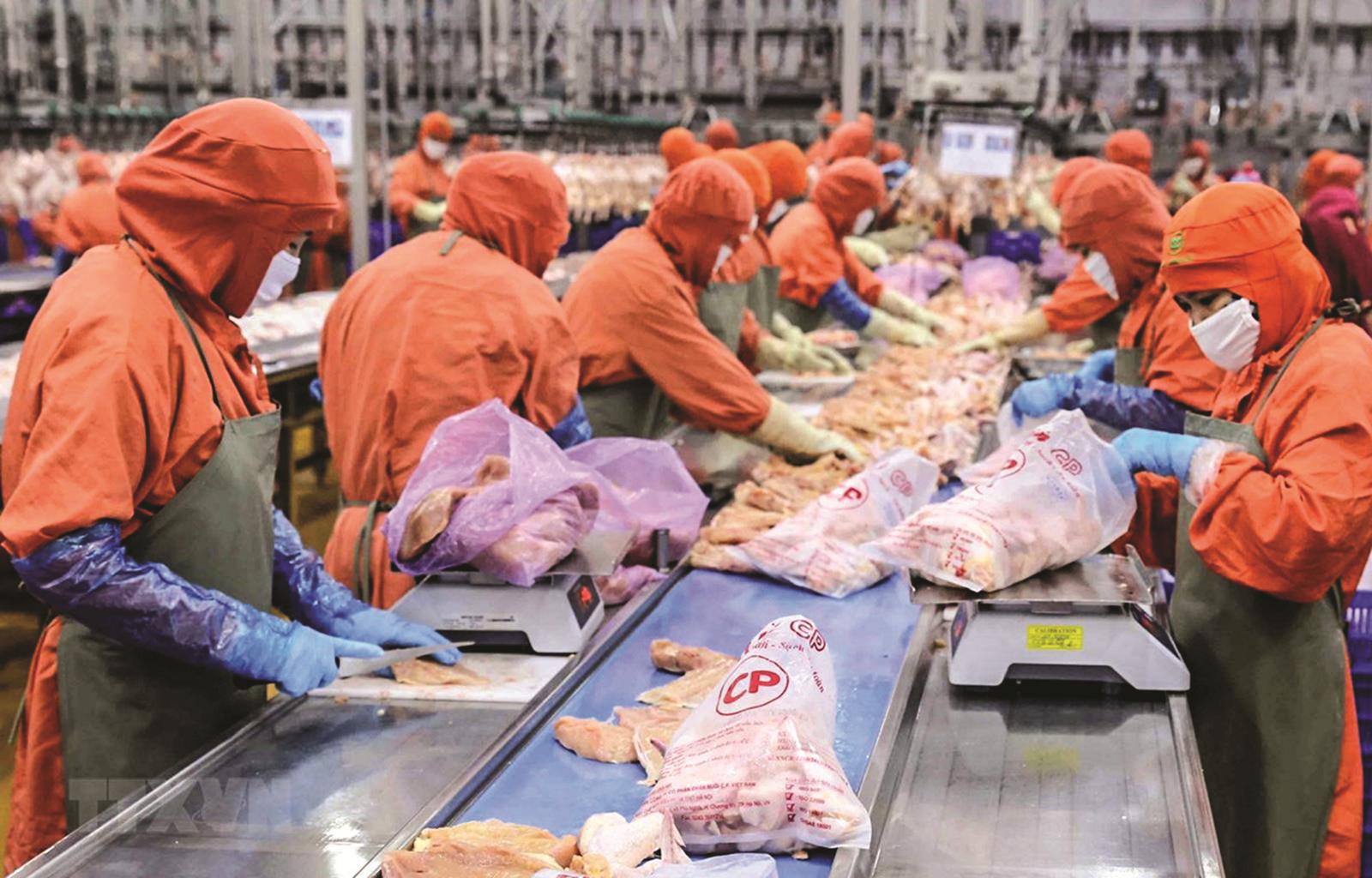 Phát triển chuỗi giá trị thực phẩm