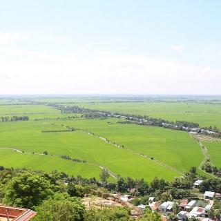 Manh mún, thiếu minh bạch, đất nông nghiệp khó thu hút doanh nghiệp đầu tư
