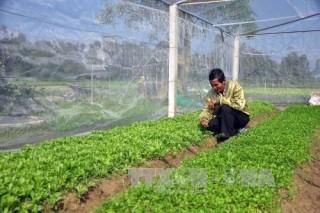 Huyện Nam Đàn cần tập trung đẩy mạnh phát triển nông nghiệp công nghệ cao