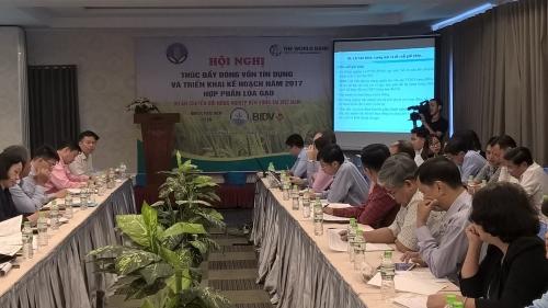 Thúc đẩy dòng vốn tín dụng hợp phần lúa gạo cho các tỉnh ĐBSCL