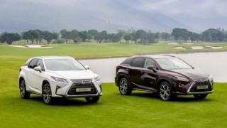 Toyota Việt Nam triệu hồi Lexus RX200t và Lexus RX350 để sửa lỗi ECU