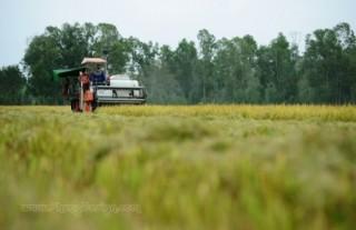Chuyển mục đích sử dụng hơn 66 ha đất tại Long An sang đất phi nông nghiệp