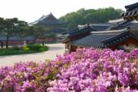 Đẩy mạnh kết nối du lịch Việt Nam – Hàn Quốc