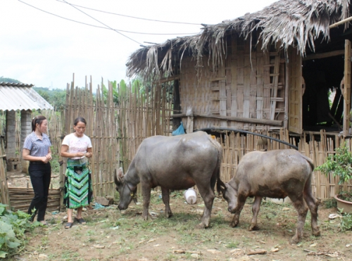 Hiệu quả trong công tác giảm nghèo ở Phú Lương