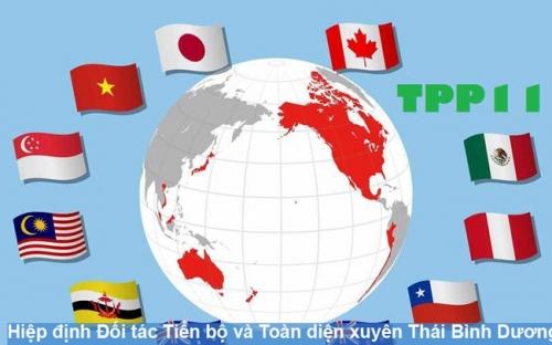 Tham gia CPTPP có lợi lớn cho Việt Nam