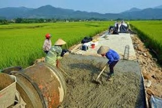 Nâng cao chất lượng tiêu chí xây dựng NTM tại một số xã thuộc huyện Nhà Bè