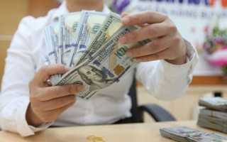 Tỷ giá USD ổn định trong ngày cuối tuần