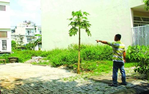 Bất động sản Đà Nẵng vào đợt sóng mới