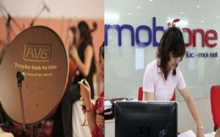 Thanh tra Chính phủ đề nghị khởi tố vụ Mobifone mua AVG