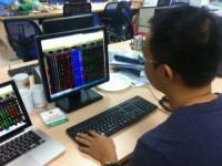 Thị trường vượt đỉnh sau 11 năm: Nhà đầu tư rất phấn khích nhưng vẫn dè dặt
