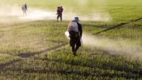 Nông nghiệp đang gây ra ô nhiễm môi trường nghiêm trọng