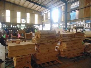 COVID-19 đe dọa mục tiêu xuất khẩu 12,5 tỷ USD của ngành gỗ