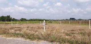 HoREA kiến nghị bỏ quy định tách thửa với từng loại đất nhằm hạn chế phân lô bán nền trái pháp luật