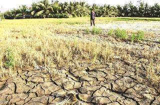 Miền Tây vắng mùa nước nổi