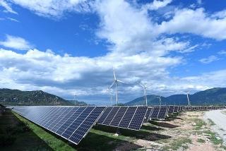 Ninh Thuận: Đầu tư nhà máy điện mặt trời 450MW