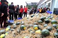 NCB mua hơn 5 tấn dưa hấu tặng khách hàng tại địa bàn Hà Nội