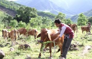 Diện mạo mới trên vùng cao Đakrông
