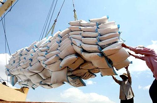 Thực hiện đồng bộ các giải pháp để đẩy mạnh hoạt động xuất khẩu gạo