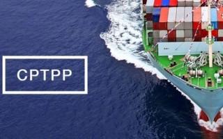 CPTPP: Lao động trình độ cao hưởng lợi nhiều nhất
