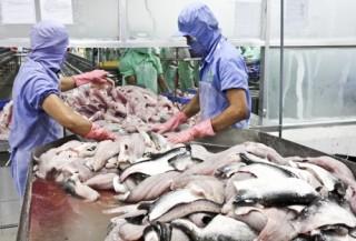 Để thủy sản Việt không bị nước ngoài trả về