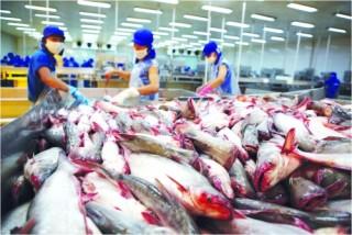 Xuất khẩu đối phó với rào cản thương mại