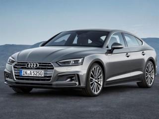 Audi Việt Nam triệu hồi 89 xe để thay thế nẹp chỉ crom ốp loa cửa