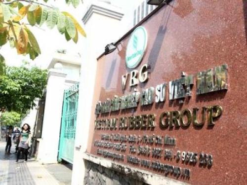 Điều chỉnh cơ cấu cổ phần phát hành lần đầu Công ty mẹ - VRG