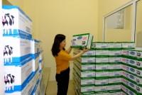 Hàng triệu ly sữa học đường cung cấp cho trẻ em Hà Nội mỗi ngày