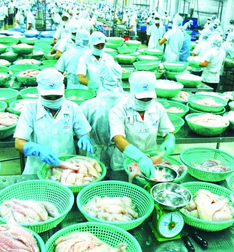"""Gỡ """"thẻ vàng"""" đối với hải sản Việt Nam: Không để trên nóng dưới lạnh"""