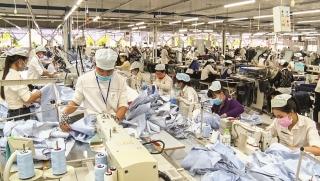 Chuyên gia ADB: Độ trễ càng ngắn,chính sách càng hiệu quả